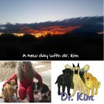 A new day with dr. kim